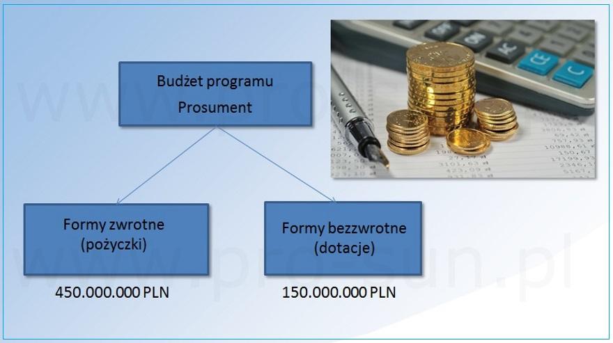 Program Prosument