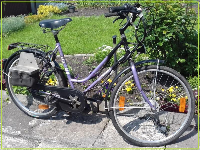 E-bike /rower elektryczny/
